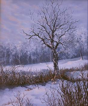 Winter Slumber by Lynne Wright