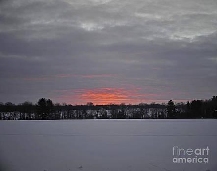 Elaine Mikkelstrup - Winter Sunrise