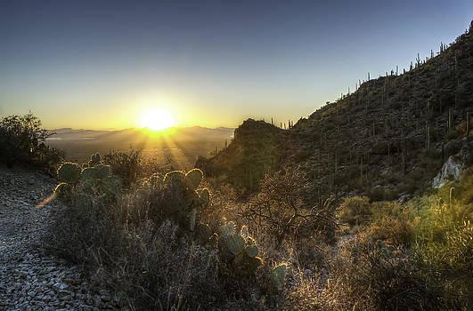 Winter Sunset by Lynn Geoffroy