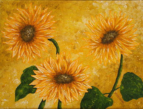 Yellow Daisies by Pamela Allegretto