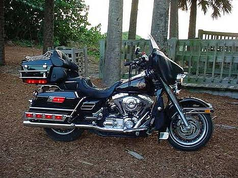 2002 Electra Glide Classic by Bruce Kessler