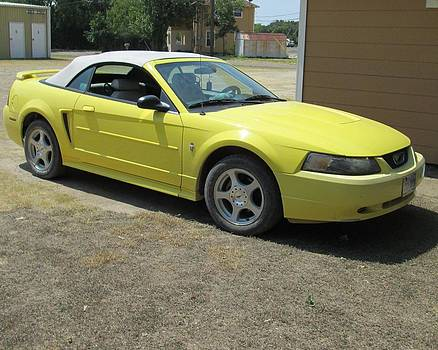 2003 Mustang by Rosalie Klidies