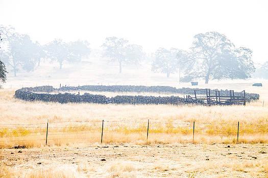 2013 Rim Fire smoke by Brian Williamson