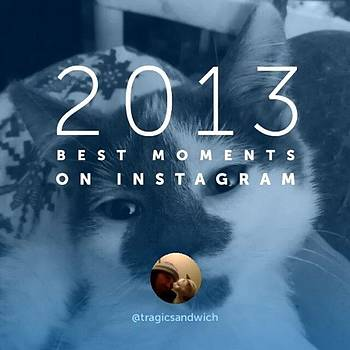 2013's Best Moments On Instagram by Haley BCU