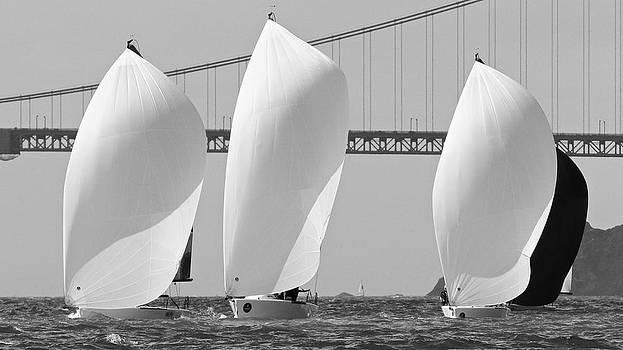 Steven Lapkin - San Francisco Spinnakers