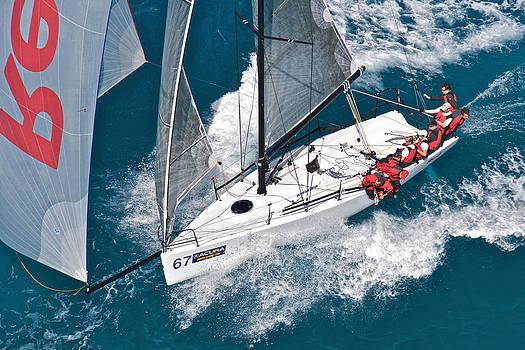 Steven Lapkin - holiday sail sale
