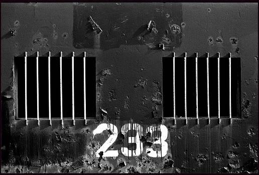 233 by Steven Huszar