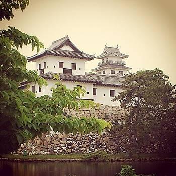 Castle3 imabari by Yoshikazu Yamaguchi