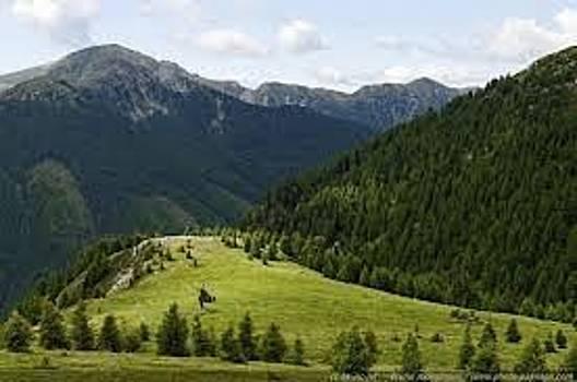ADEYEMI FAWOLE - Beautiful Landscape by ADEYEMI FAWOLE Hamilton Adeyemi Fawole NZ