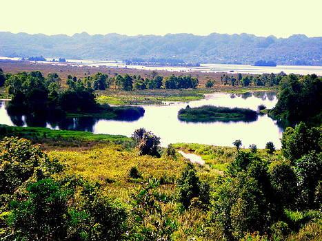 Ayamaru Lake by Jason Sentuf