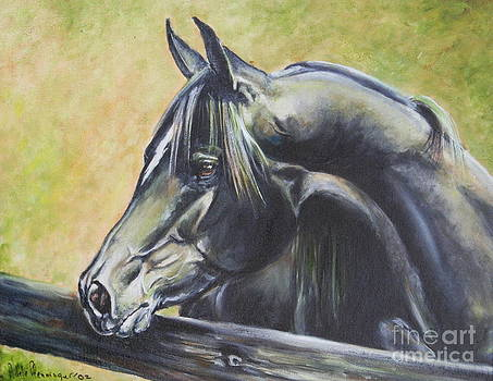 Black Stallion by Adele Pfenninger