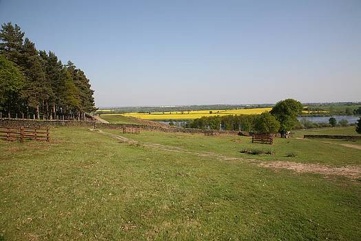 Mark Severn - bradgate park