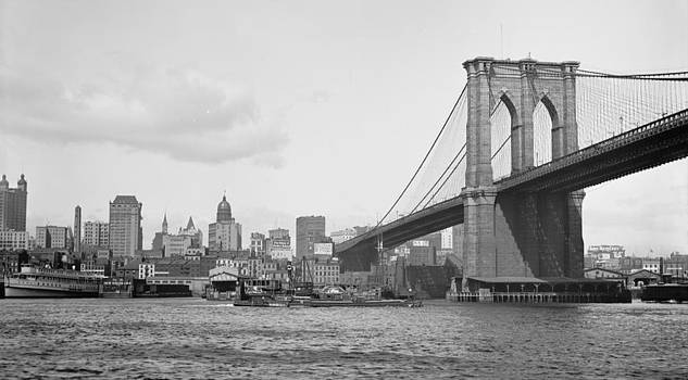 Steve K - Brooklyn Bridge
