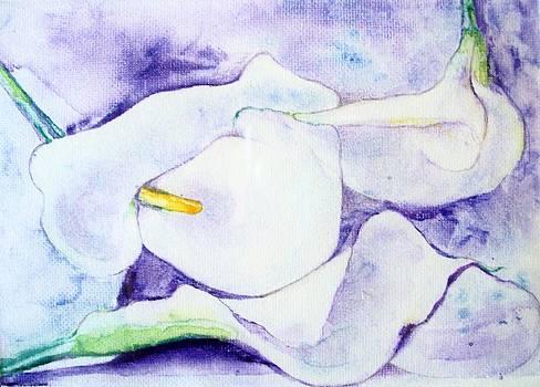 Shan Ungar - 3 Calla Lilies