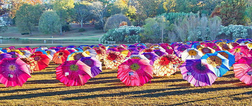 Simply  Photos - Colorful Umbrellas at the Park