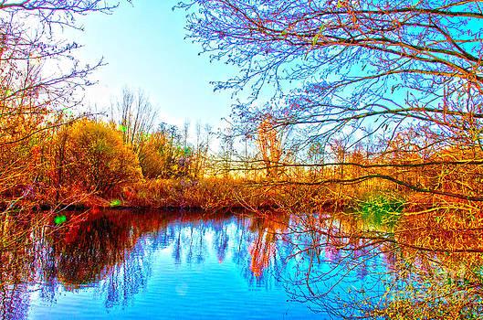 Pravine Chester - Countryside