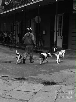 3 Dog Day by WaLdEmAr BoRrErO