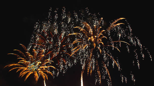 Fireworks by Lester Phipps