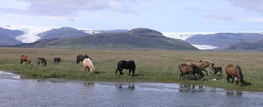 Flaajokull by Olaf Christian