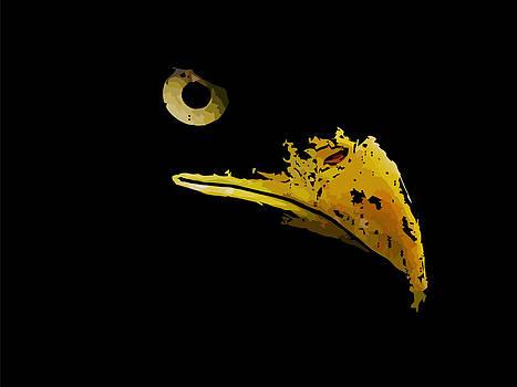 Graphical sketch of silhouette predator eagle by Larisa Karpova