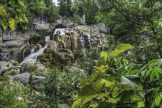 Inglis Falls by Paul Pascal