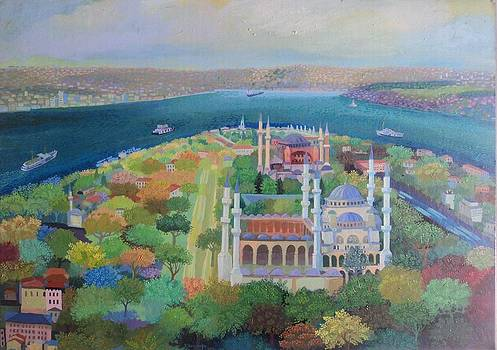 Istanbul by Yavuz Saracoglu