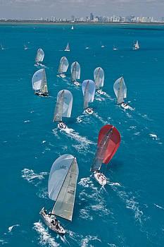 Steven Lapkin - Miami Regatta Skyline
