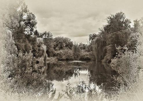 Nature by Gouzel -