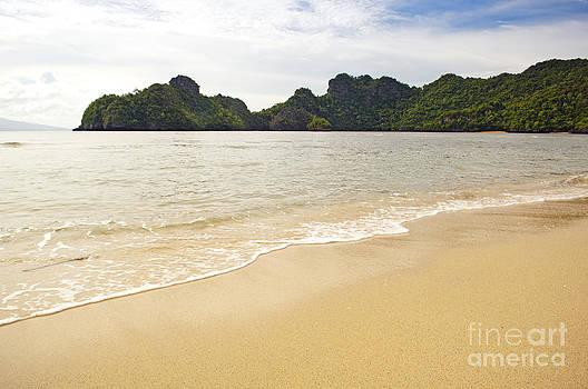 Tim Hester - Paradise Beach