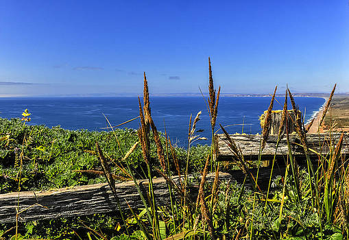 Point Reyes National Seashore by Gej Jones