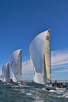 Steven Lapkin - sail sails sailor