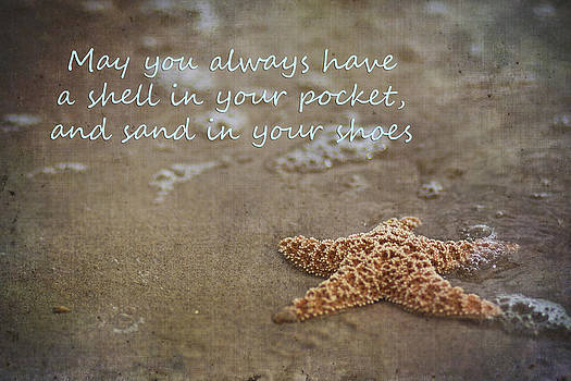 Regina  Williams  - Starfish on beach