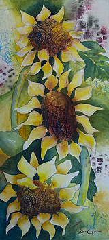Dee Carpenter - 3 Sunflowers