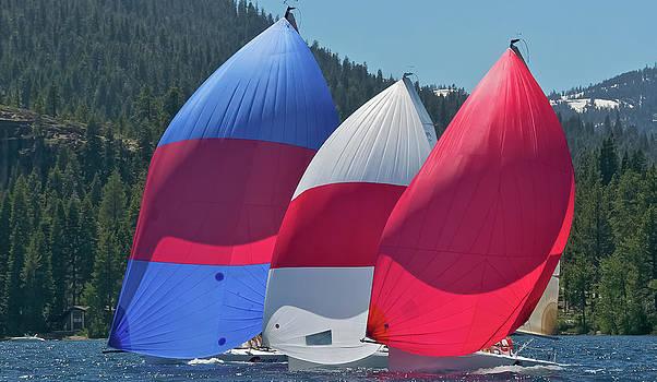 Steven Lapkin - Tahoe Colors