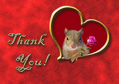 Jeanette K - Thank You Squirrel