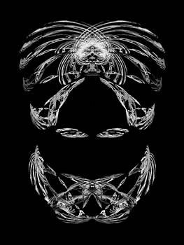 Jane McIlroy - Veiled Lady