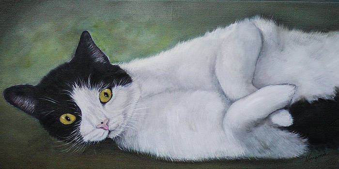 Mallie the Cat by Virginia Butler