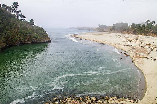 West Coast and Beach by Brian Williamson