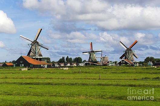 Pravine Chester - 3 Windmills