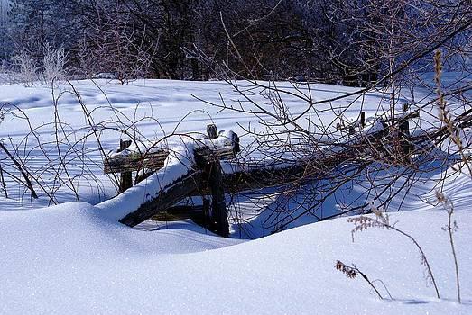 Winter by Pierre Labrosse