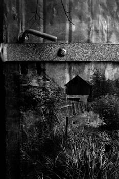Mariusz Zawadzki - the gate again