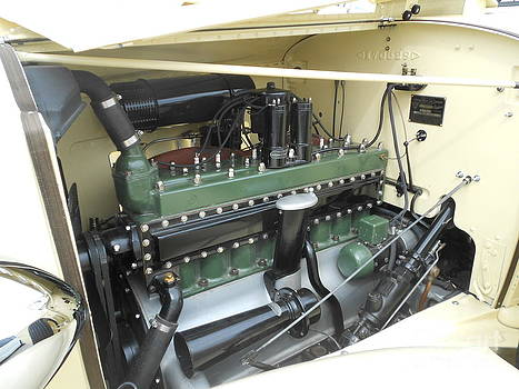 32 Packard Light Eight by J Anthony Shuff