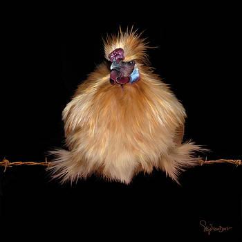 37. Jodokus on a wire by Sigrid Van Dort