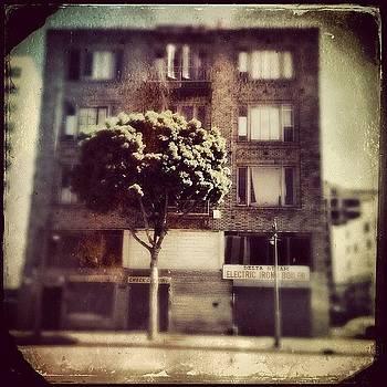 Instagram Photo by Torgeir Ensrud