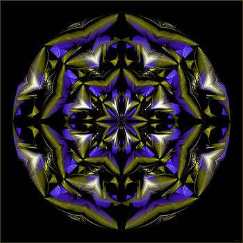 Beautiful Crystal Circle by Gillian Owen