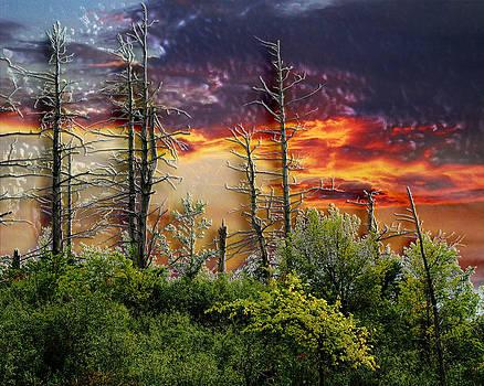 3D Sunset by Robert St Clair