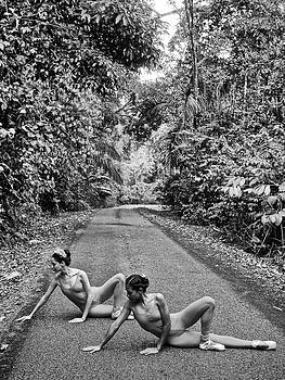 Kike Calvo - Ballet In The Rainforest