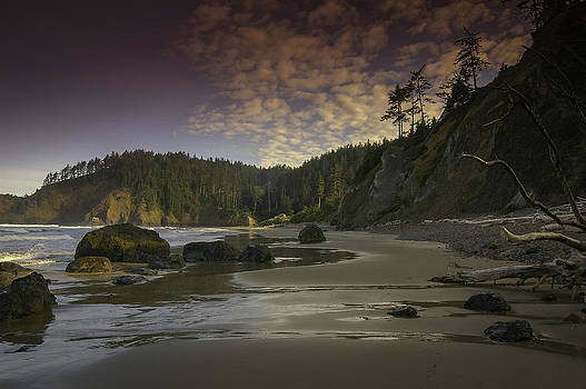 Beautiful Oregon Coast by Jean-Jacques Thebault