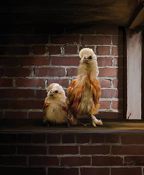 4. Brick Chicks by Sigrid Van Dort