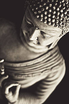 Buddhist Perspective by Ioana Todor